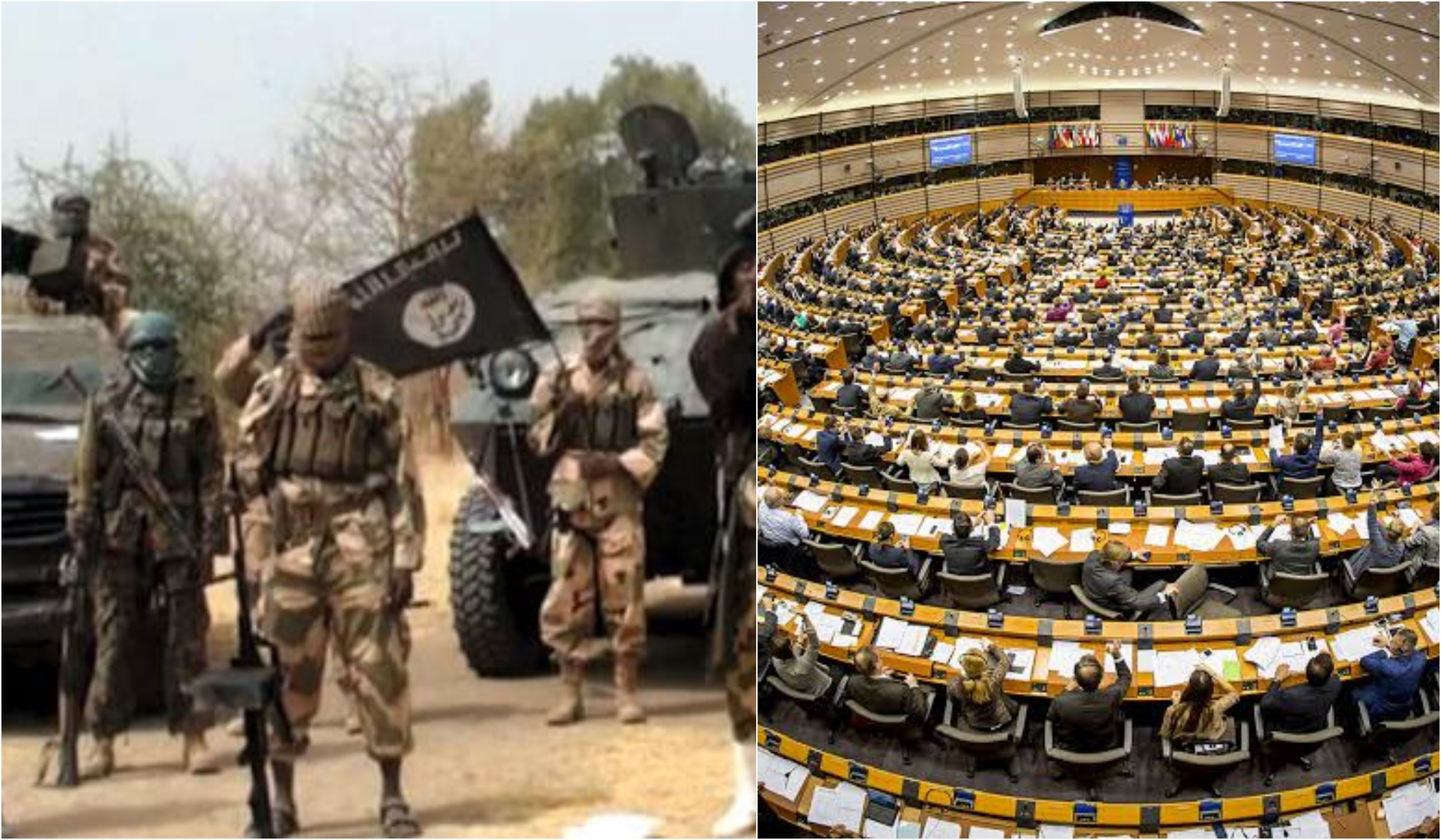 There?s no progress in the fight against Boko Haram - EU