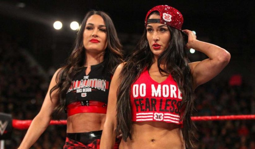 WWE twins Nikki and Brie Bella announce they are both pregnant at the same time