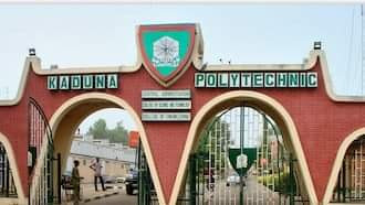Kaduna Polytechnic sacks HOD over sexual harassment of female student
