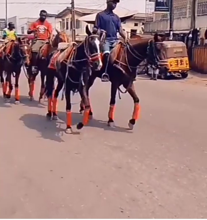 Okada ban: Horse ride from Ikoyi to Obalende is 3,500 Naira - Show promoter claims