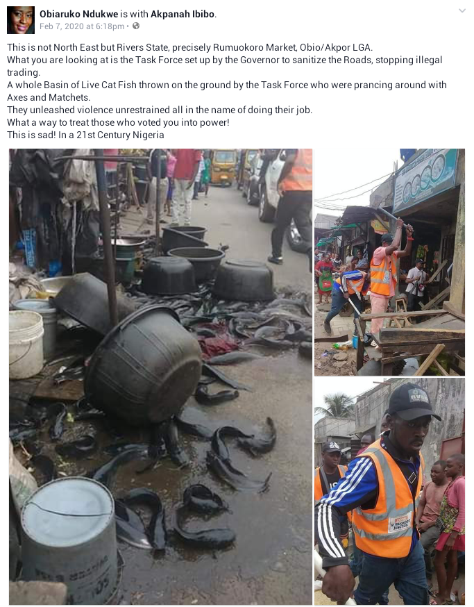 Rivers State Task Force destroys illegal market, scatters bowls of live cat fish, food