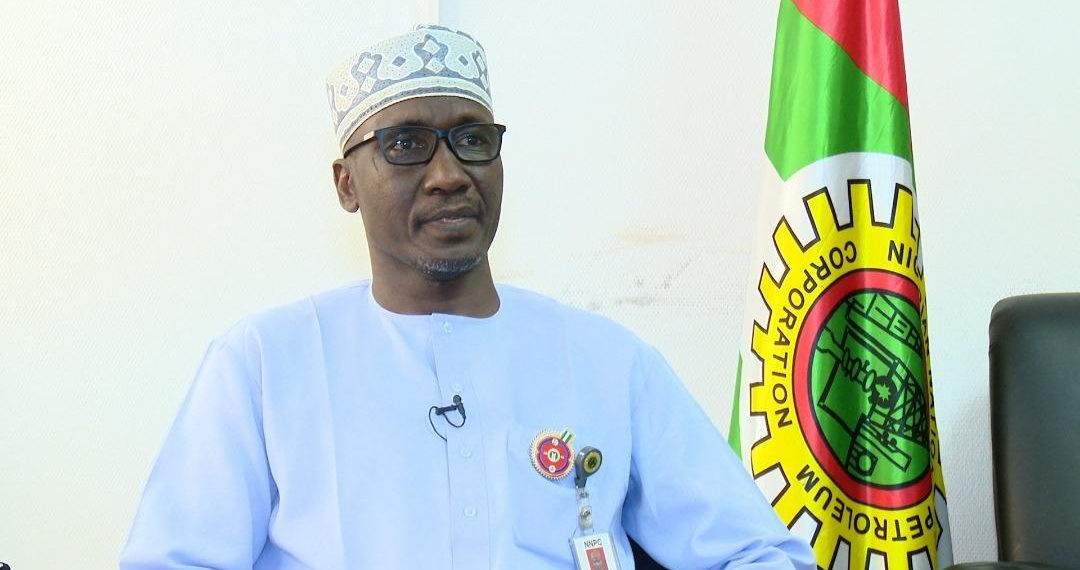 Electricity in Nigeria is for the elite - NNPC GMD, Mele Kyari