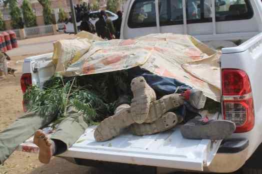 Boko Haram kills 6 policemen in Dapchi attack