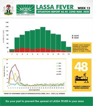 Lassa fever death toll in Nigeria rises to 176 amid battle with coronavirus