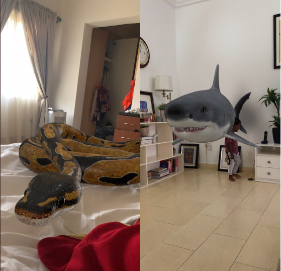 Google gives people a chance to view animals in 3D in their homes and Nigerian parents are having fun with it (photos)