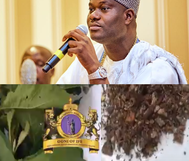 """""""Coronavirus solution. It is real and it works"""" Ooni of Ife reveals herbs he says can be used to treat coronavirus"""