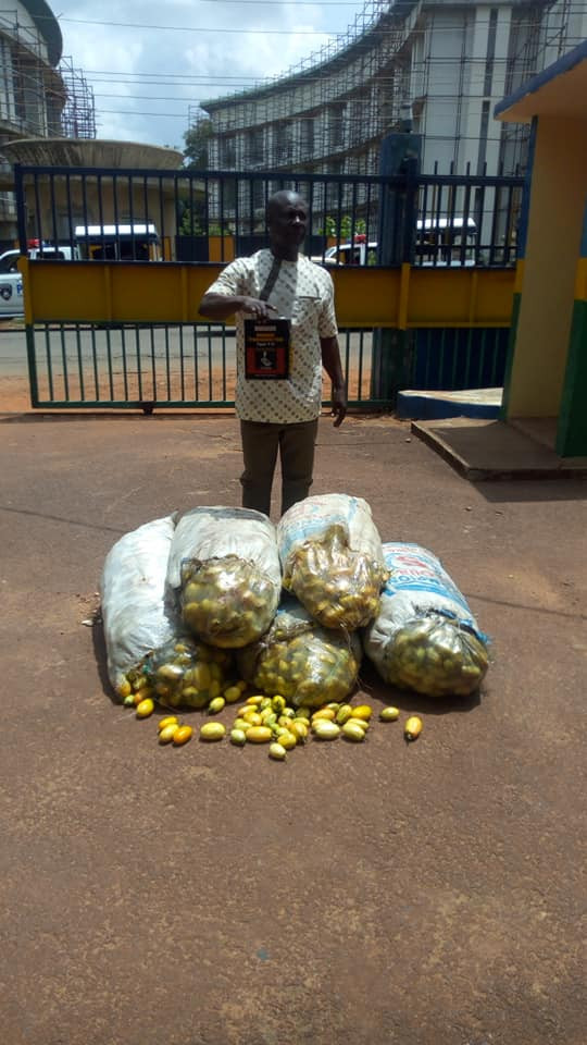 Man arrested for poisoning 143 bags of garden eggs in Enugu