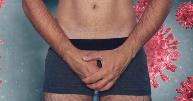 Men?s testicles ?could make them more vulnerable to coronavirus? - New study finds