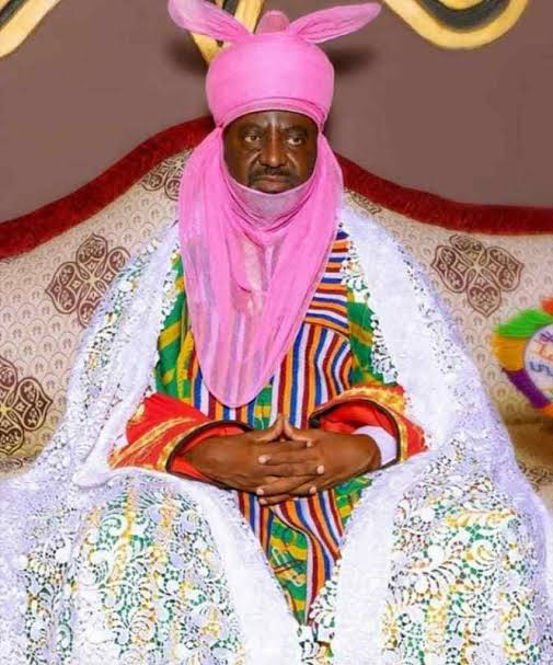 Mysterious deaths in Kano not connected to Coronavirus - Emir of Kano