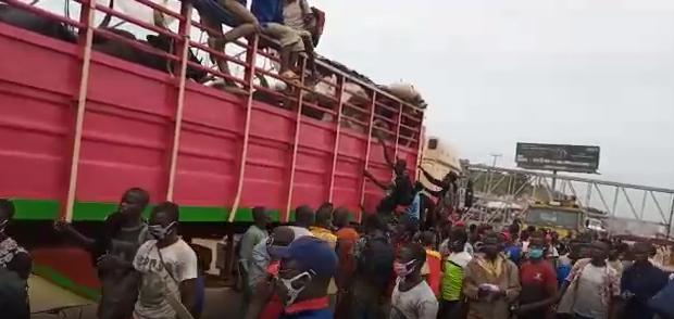40 men from Zamfara hidden inside a truckload of cows intercepted in Lagos  (photos)