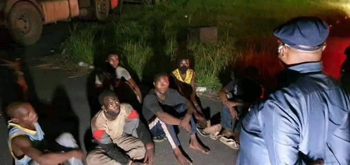 Gov Wike arrests 14 men hidden in trailers conveying cows from the North; says cows would be auctioned (photos)