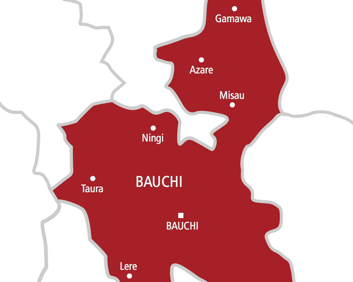 Bauchi records first Coronavirus death