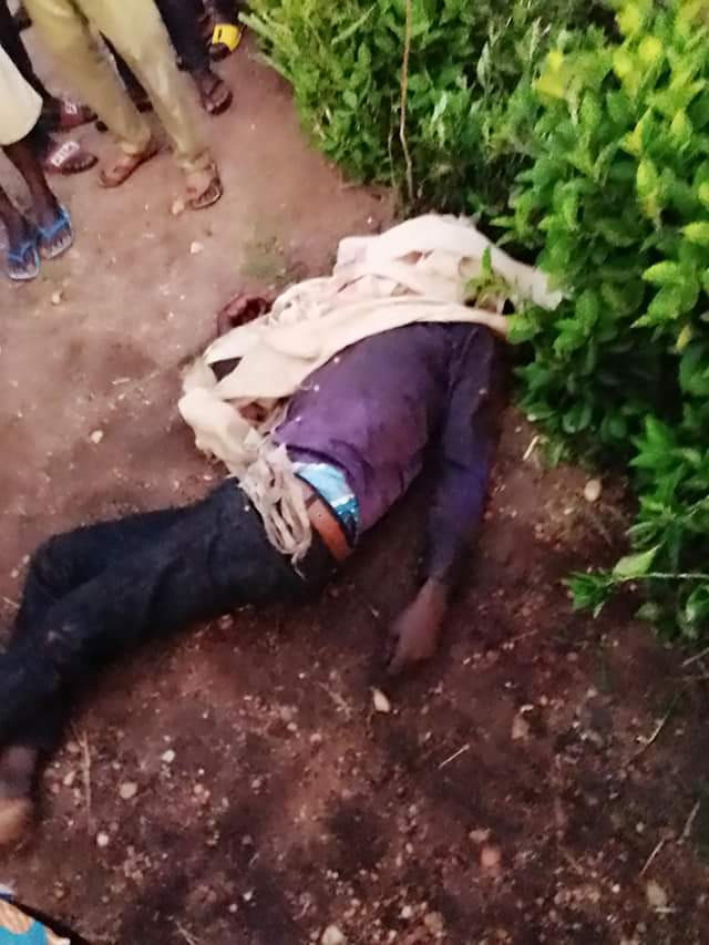 Six killed as armed herdmen attack Benue village (photos)