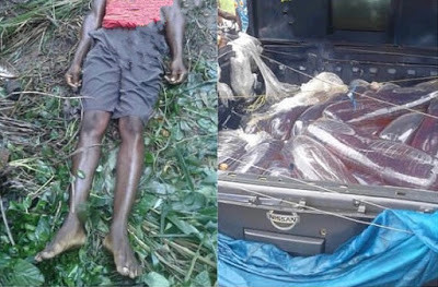 Fleeing policemen crush man to death in Imo