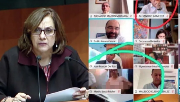 Mexican senator goes topless during Government Zoom call after mistakenly thinking she?d turned her camera off (Photos)