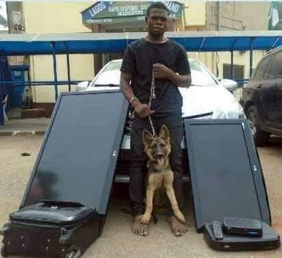 Armed robber arrested after stealing household items and security dog guarding the house he robbed