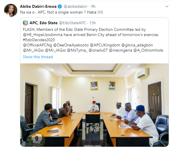 "Abike Dabiri-Erewa tackles APC for ""sidelining"" women in Edo primary committee"