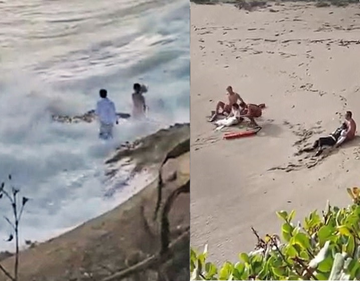 Newlyweds are rescued after a huge wave swept them into the sea while they were posing for their wedding photos