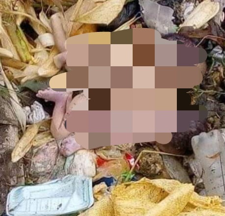 Twin babies found dumped in refuse site in Calabar (graphic photos)