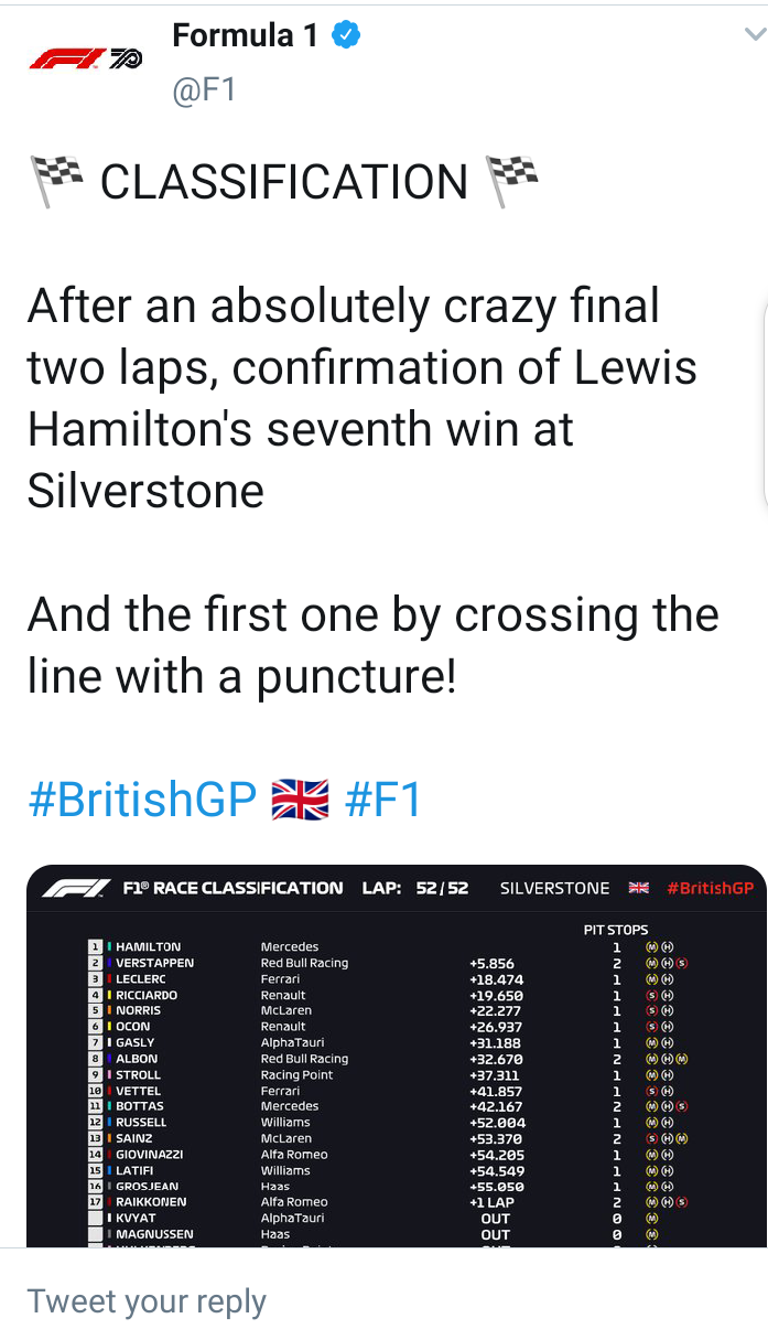Lewis Hamilton wins British Grand Prix for 7th time despite suffering tyre puncture during final lap (photos)