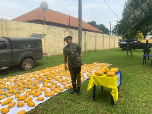 Fake Army Major conveying bags of Indian hemp arrested in Delta (photos)