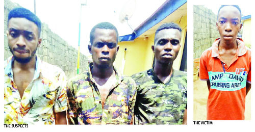 Siblings arrested for masterminding the kidnap of their youngest brother so as to extort N7m from their grandfather (photo)