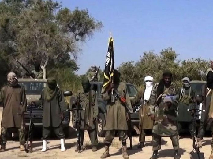 Boko Haram members attack Borno community and abduct over 100 persons