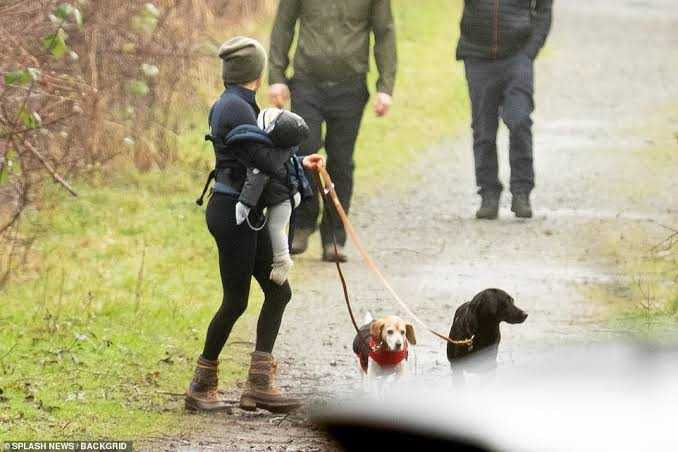 Meghan Markle sues agency over paparazzi pics of her walking dogs with Archie