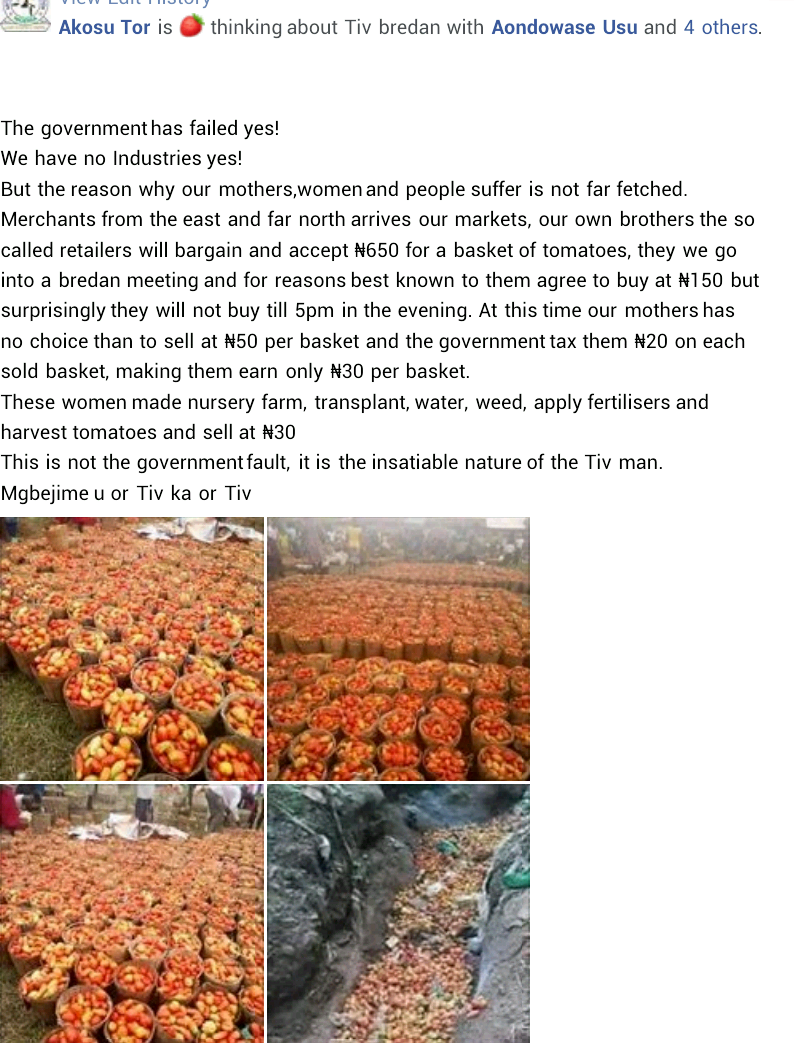 Man makes shocking revelation about how female farmers in Benue are allegedly forced to sell baskets of tomatoes at N50 each
