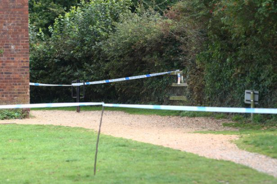 Man, 62, charged with raping three-year-old child in woodland on Isle of Wight