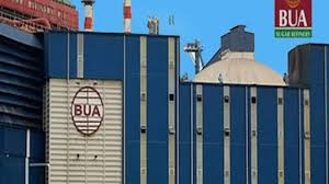 Federal government also grants special waiver to BUA cement to export via land border