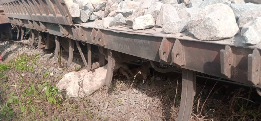 Kwara-bound train kills 47 cows worth over N10m in Osun