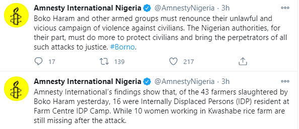 10 women farmers missing after Boko Haram killed 43 other in Borno ? Amnesty International