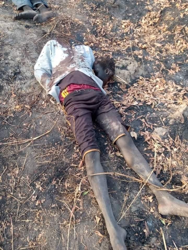 Zabarmari Massacre Photos  (very Graphic)*