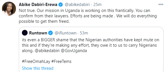 The Nigerian mission in Uganda is doing everything to get Omah Lay and Tems free- Abike Dabiri-Erewa