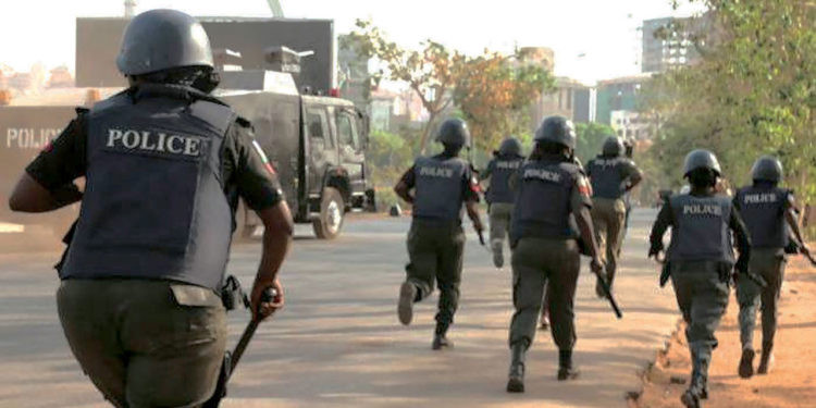 Police foil abduction of Chinese national in Taraba