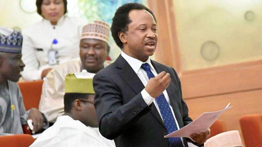 Shehu Sani outlines ways government can secure schools in the north