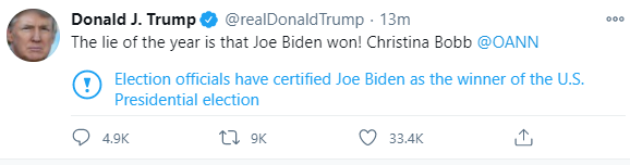 """The lie of the year is that Joe Biden won!"" Donald Trump tweets"