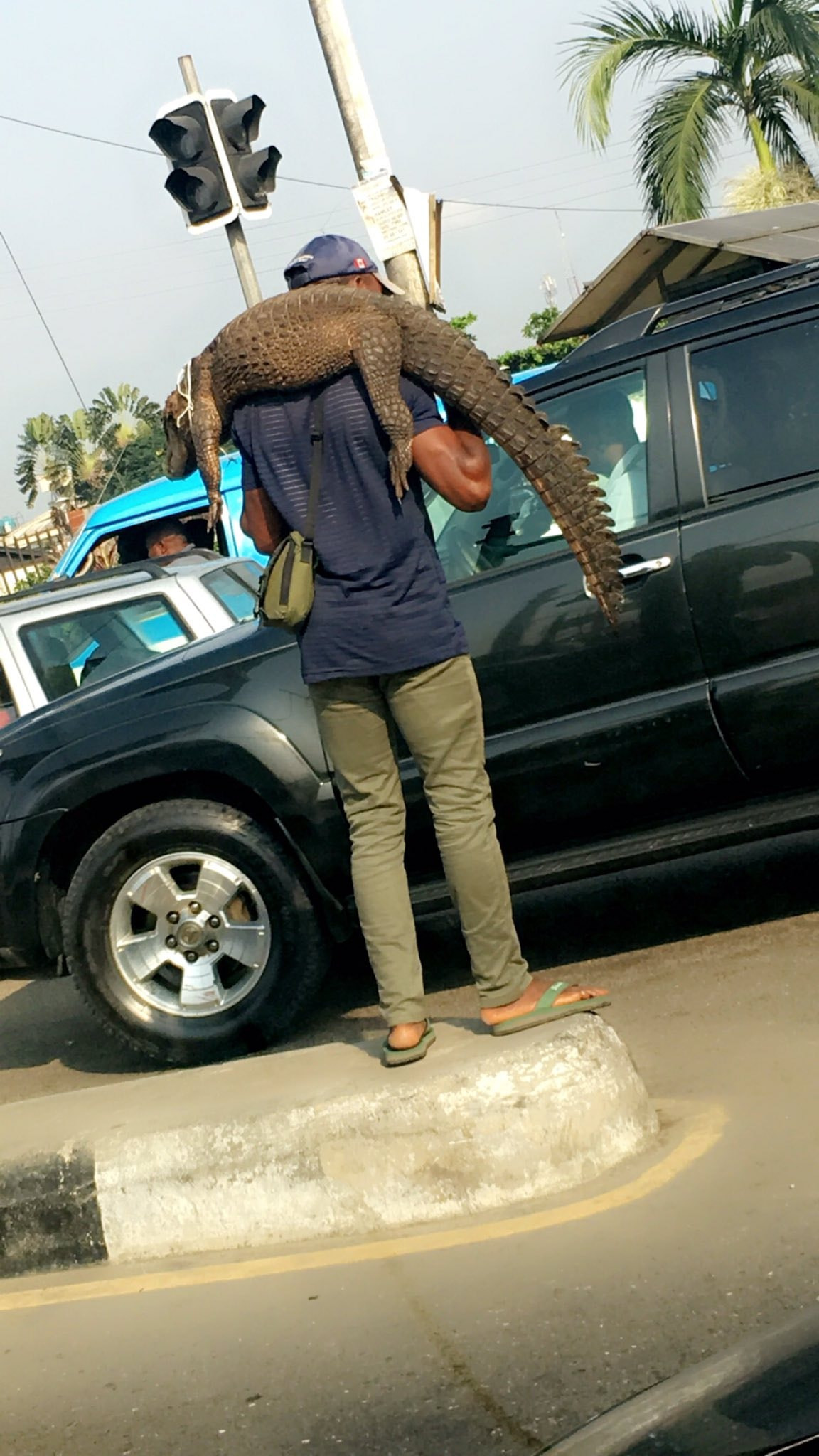 Man spotted hawking crocodile in Port Harcourt traffic (photos)
