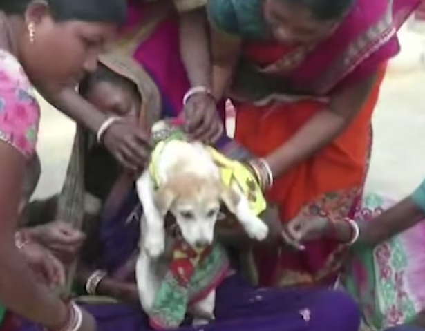 6-year-old boy and another child married to a dog to ward off evil spirits after the children started to grow teeth through their upper gums
