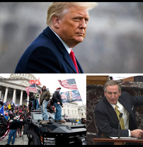 Trump impeachment trial 2: Defense lawyers claim Capitol attack wasn?t an insurrection