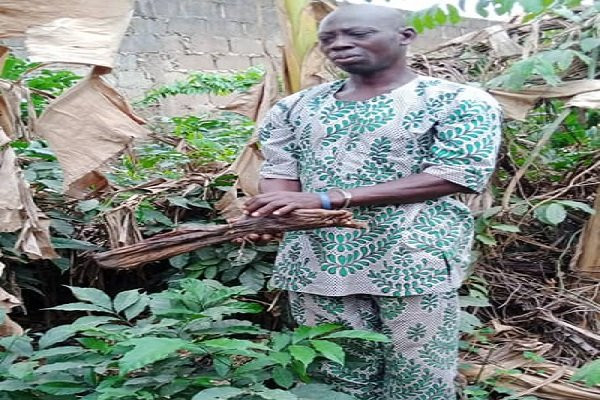 Suspected ritualist arrested with human parts in Osun (photos)