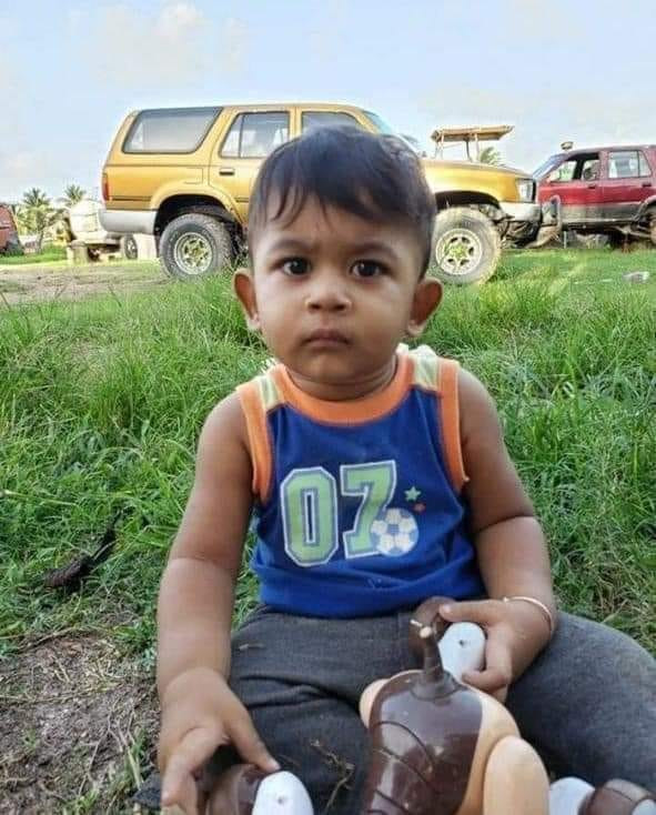 Toddler accidentally crushed to death as his father reverses truck