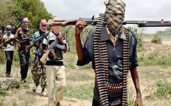 Woman, one-year-old daughter, 11 others killed as bandits attack Kaduna communities