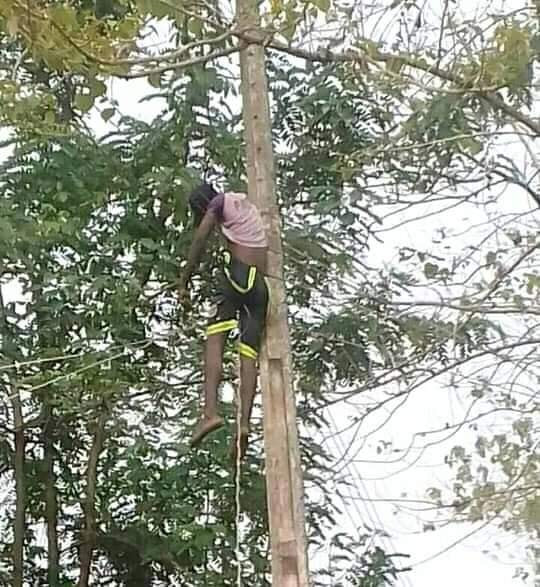 26-year-old man electrocuted while reconnecting electricity cable in Benue (graphic photo)