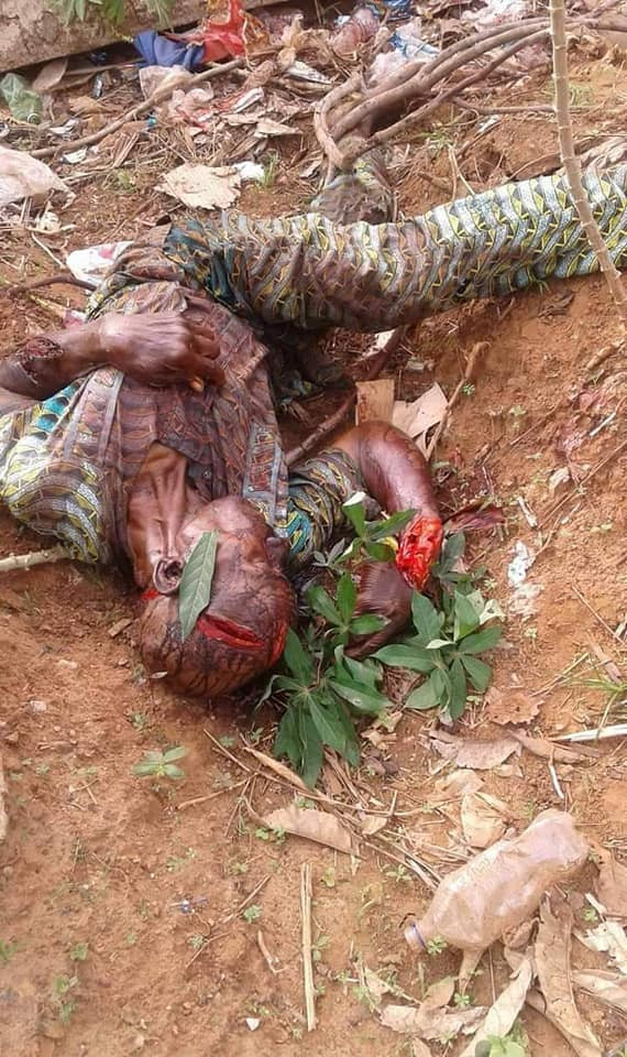 Graphic: Suspected herdsmen attack Ebonyi communities, hack many to death  (graphic photos)