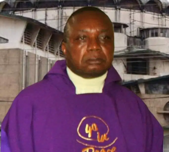 Abducted Imo catholic priest regains his freedom