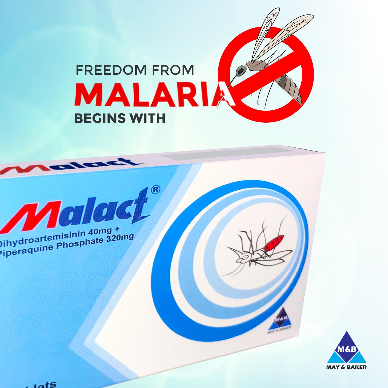 World Malaria Day: Malact Continues the Fight Against Malaria