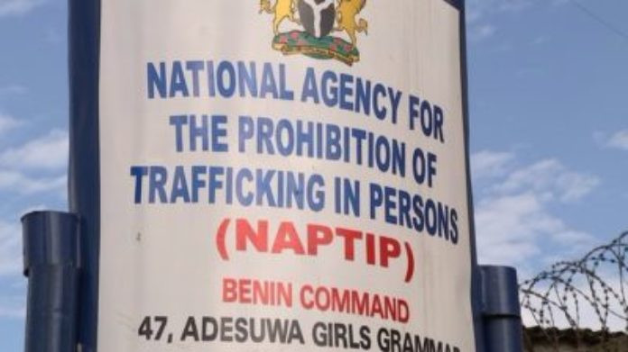 NAPTIP reunites human trafficking victim with her family after 20 years