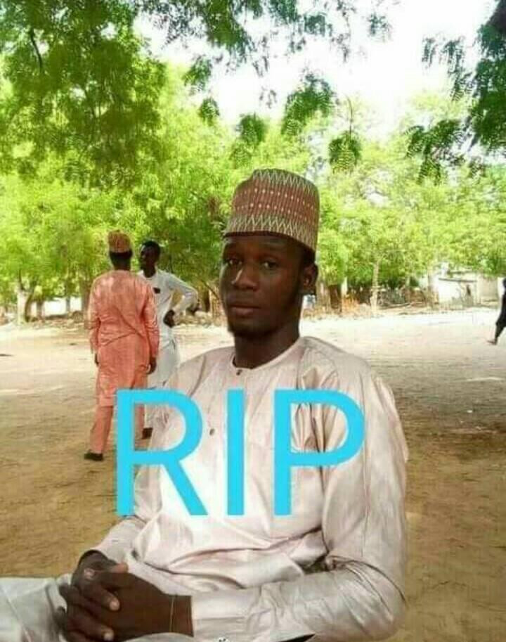 Boko Haram reportedly slaughters residents including school teacher, eleven members of a family in Geidam, Yobe
